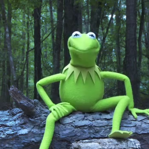 Kermit the Frog Risks His Life to Accept the ALS Ice Bucket Challenge