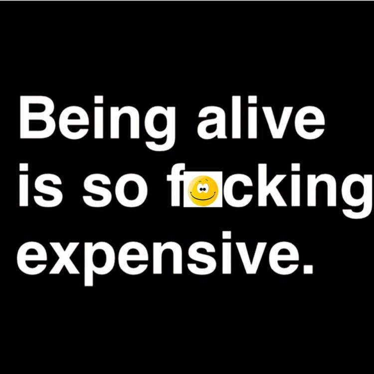 chronic illness meme: being alive is so fucking expensive