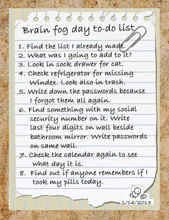 fibromyalgia meme: brain fog day to do list