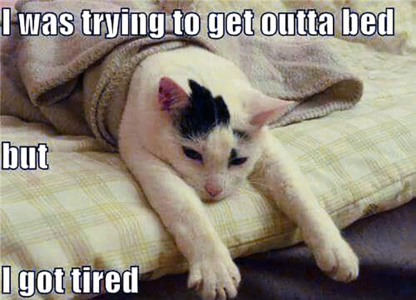 fibromyalgia meme: i was trying to get outta bed but i got tired.