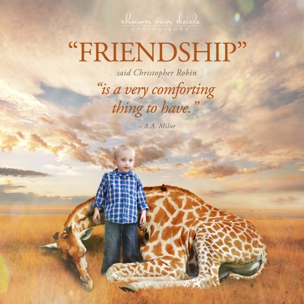 friendship by christopher robin