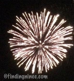 Firework2(pp_w307_h338)