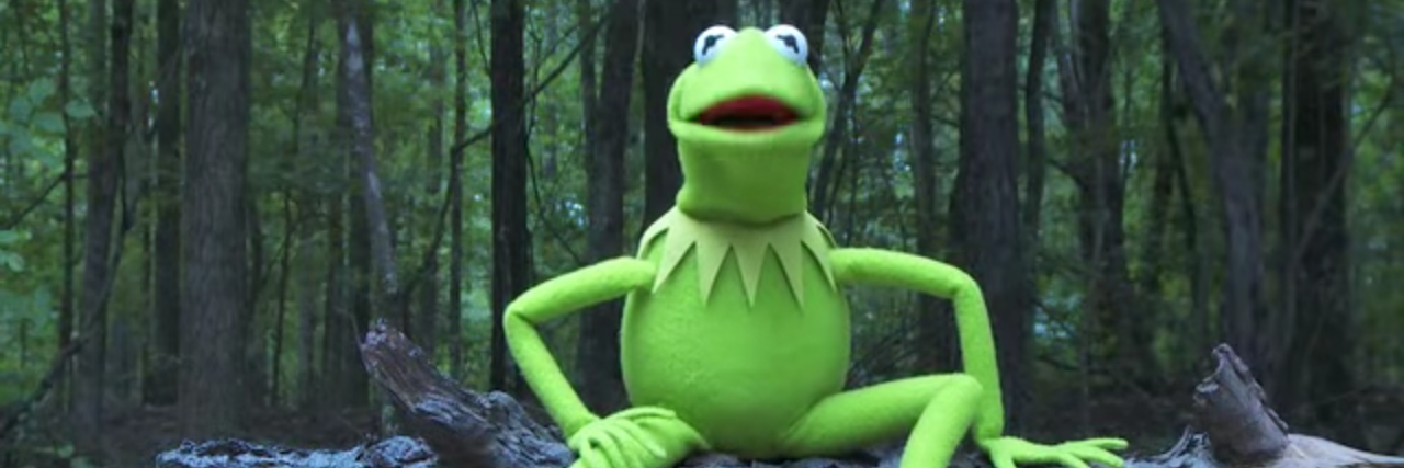Kermit the Frog puppet sitting on a log tree