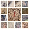 A collage of photos of the letter 'J' found in everyday life and nature