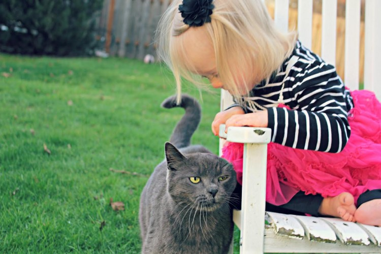 Little girl on white chair in backyard, looking down at cat next to chair