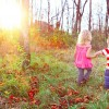 Two kids holding hands as the walk through a forested area
