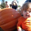 girl in orange shirt sitting next to a pumpkin