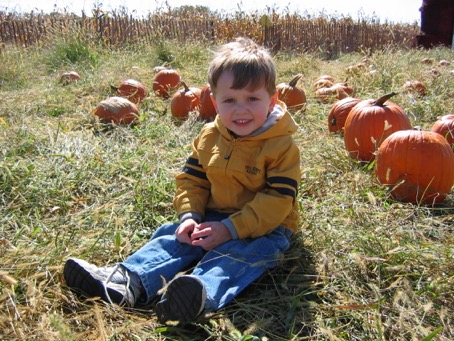 Boy sitting on the grass next to big orange pumpkins
