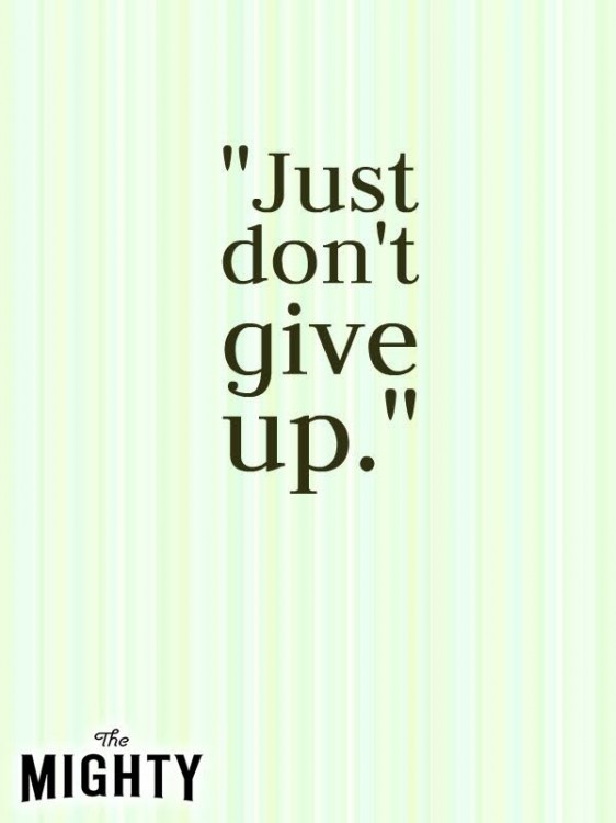 Meme that says [Just don't give up.]