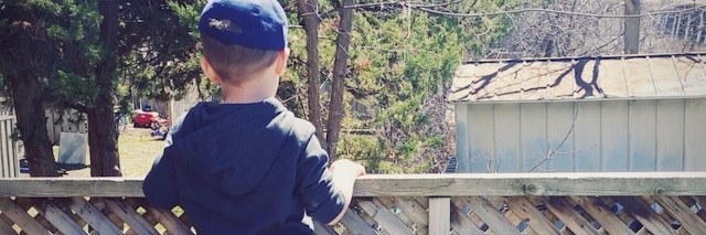 author's son looking over a fence