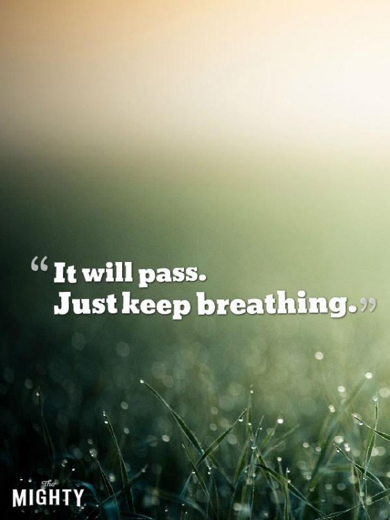 Meme that says [It will pass. Just keep breathing.]