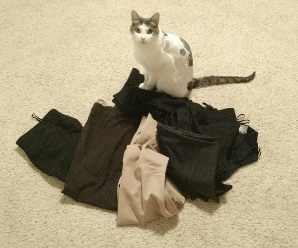 Amber Nicole's cat standing on six pairs of pants that no longer fit her due to weight gain.