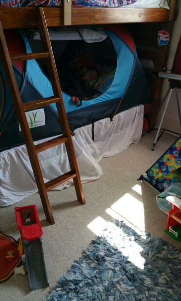 A bunk bed with a tent set up on the bottom bunk.