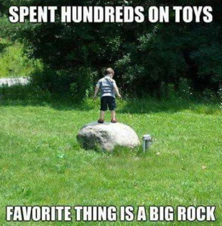 spent hundreds on toys, favorite thing is a big rock