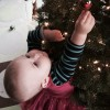 young girl hanging an ornament on a christmas tree