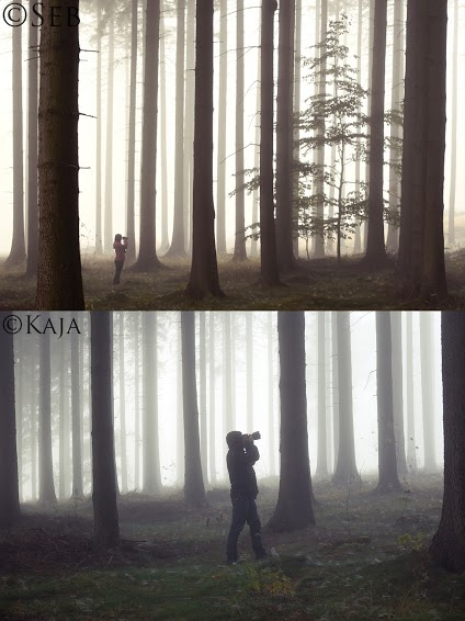 Photos of photographers in the woods from two different angles.