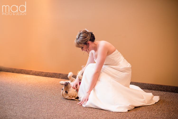 Bride petting her service dog.