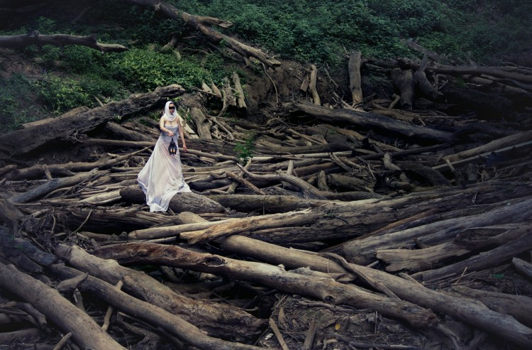 A woman stands on fallen logs holding a lantern. She swears a white dress, a white veil and a black blindfold.