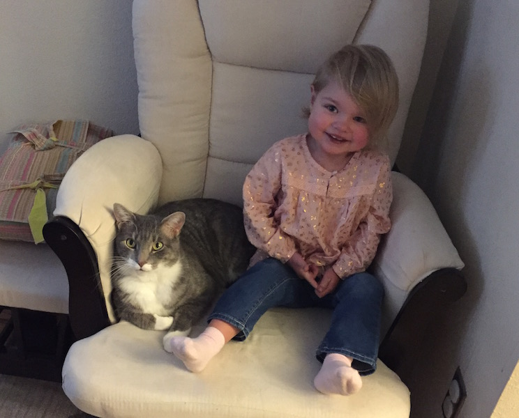 little girl in armchair with cat
