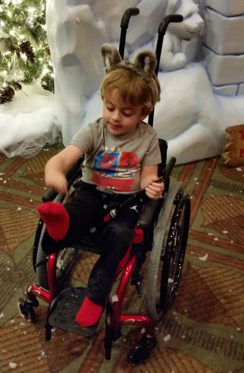 boy wearing gray shirt in wheelchair