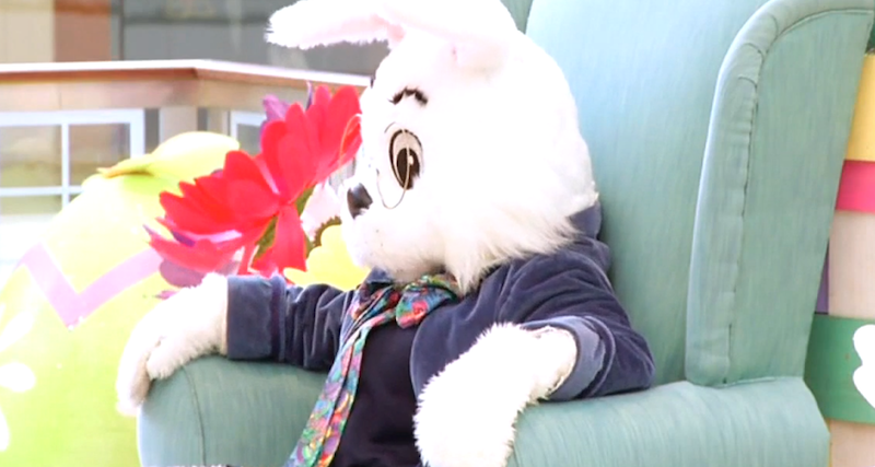 easter bunny screenshot