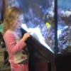 girl looking at aquarium tank