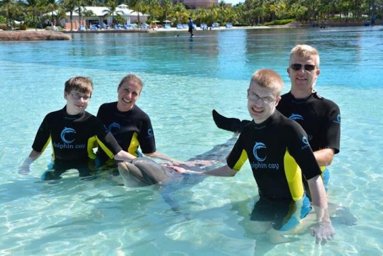 family in pool with dolphin