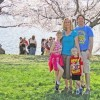 family standing on grass under cherry trees
