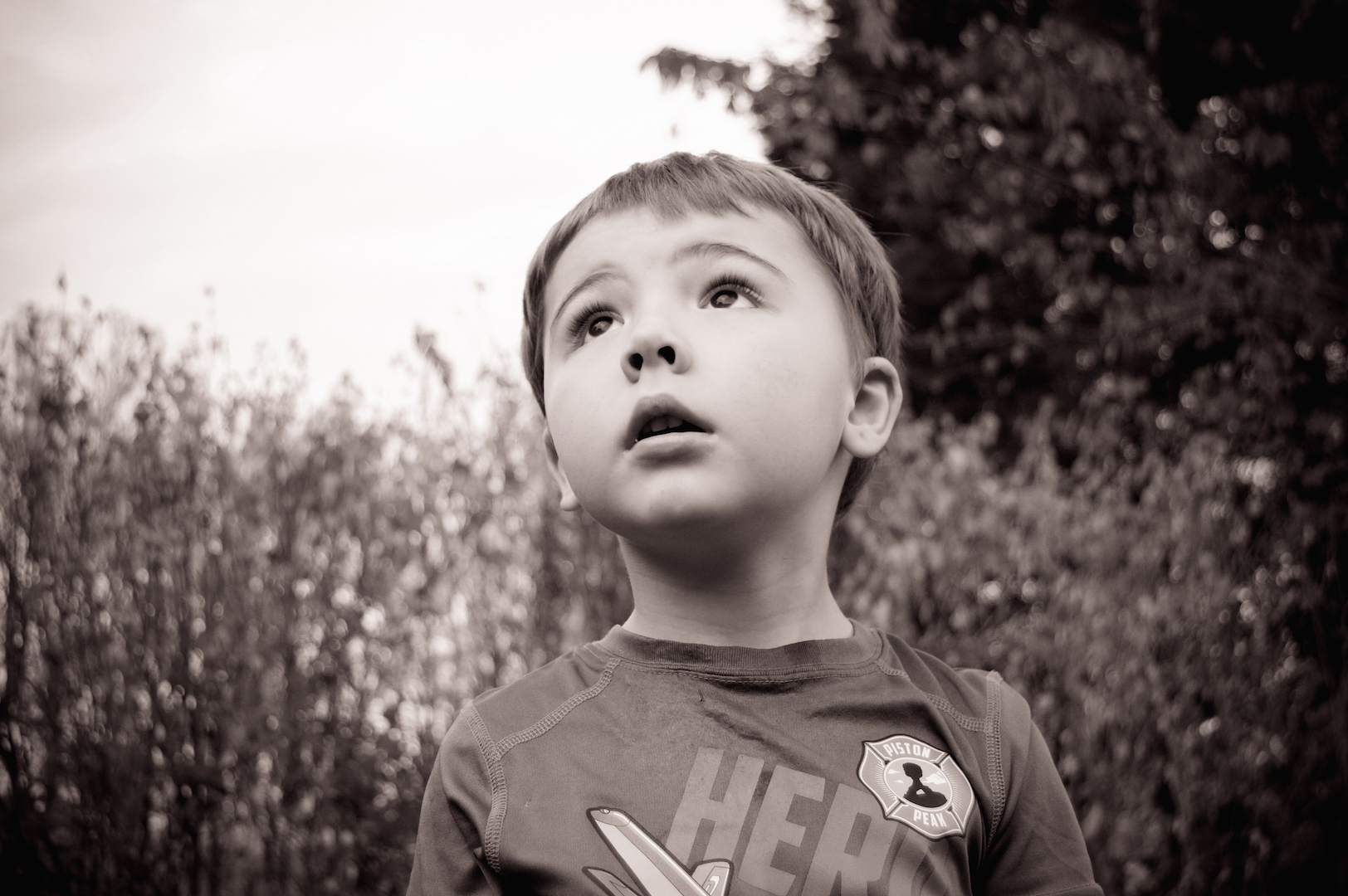 Black and white photo of little boy looking up with a tree in the background