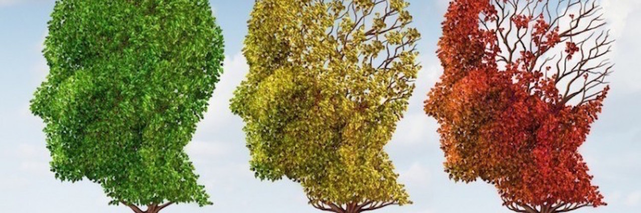 green yellow and red tree shaped like heads