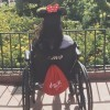 woman in wheelchair at disney wearing mouse ears