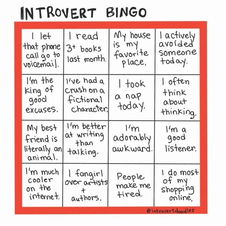 Introvert Bingo