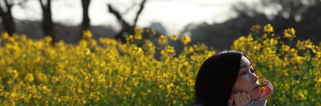 woman in field of yellow flowers