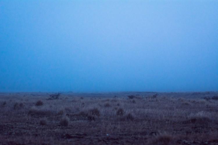A field and a dark blue sky,