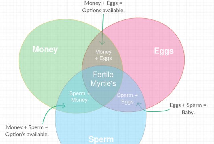 Venn Diagram Is An Egg An Egg Auto Wiring Diagram Today