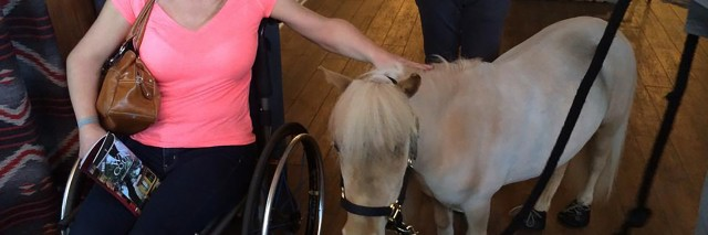 Renee with a miniature horse.