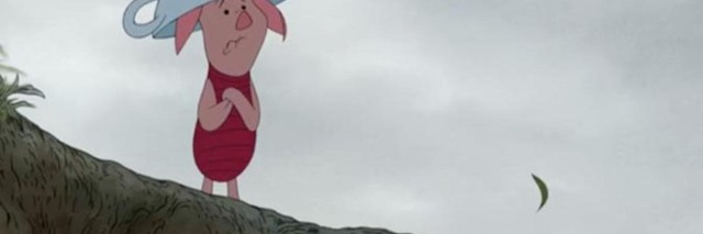 piglet looking scared