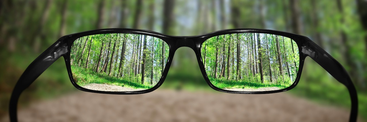 glasses being held up in front of a forest
