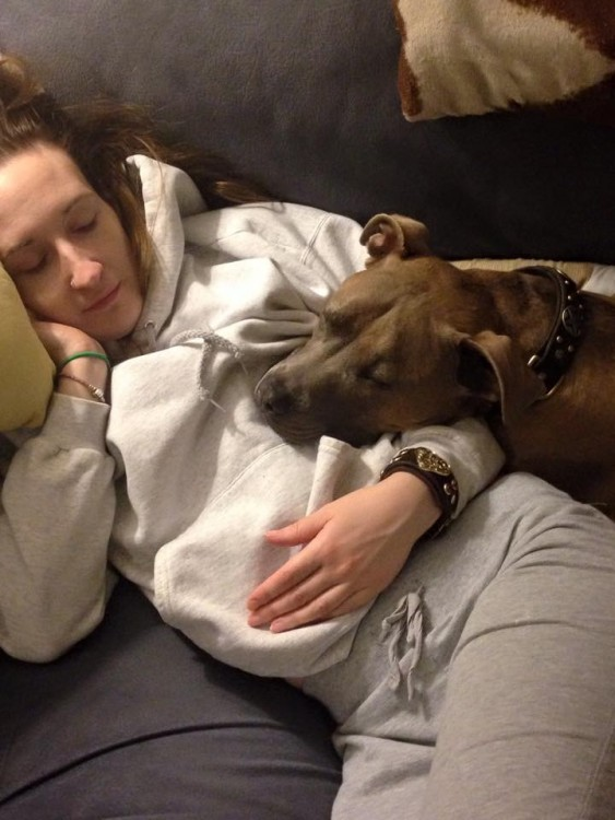 dog resting with woman on couch