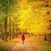 woman walking in a park in autumn