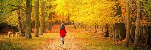 woman walking in a park in autumn