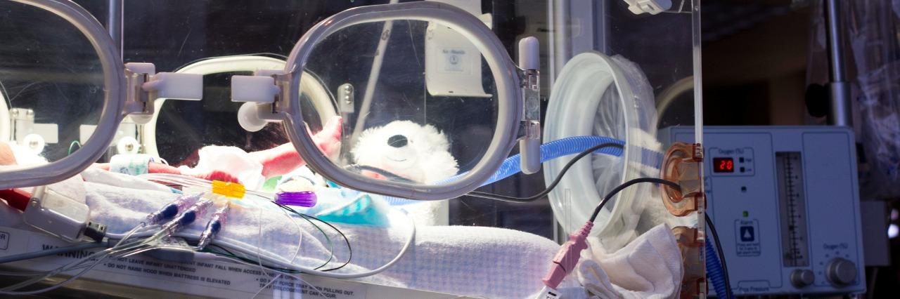 a newborn in an incubator in the nicu unit