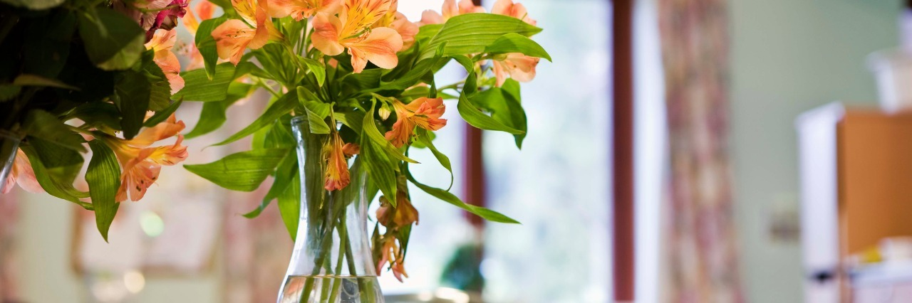 bright orange and pink flowers in a vase in a hospital room