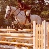 Anita age 17 on Saraha the horse jumping over bars