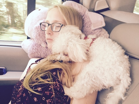 girl sitting in car with fluffy white dog