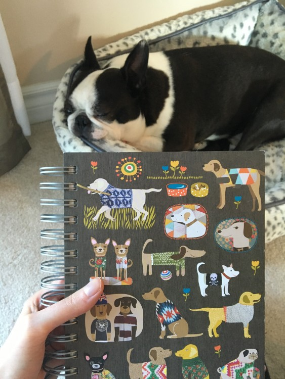 woman holding journal with dogs on the cover with her dog lying in the background