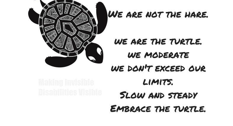 image of turtle with text that says we are not the hare. we are the turtle. we moderate, we dont exceed our limits, slow and steady, embrace the turtle