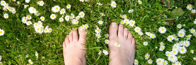 Female feet standing on green grass and white flowers