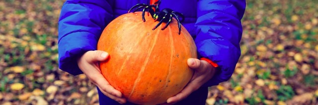 child holding pumpkin with spider on fall leaves, halloween