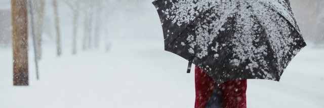 a woman walking through a snowstorm holding an umbrella